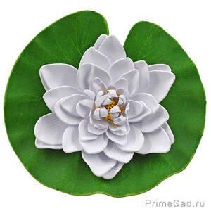 Декоративное растение Водяная лилия белая 20