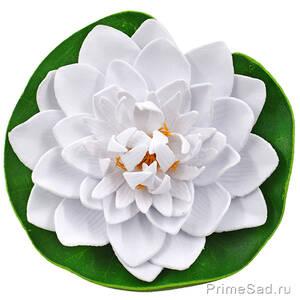 Декоративное растение Водяная лилия белая 14.5
