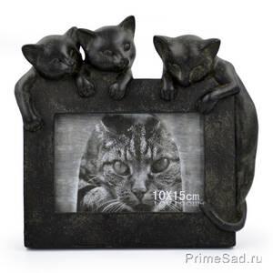 Фоторамка 10*15 Три кошки